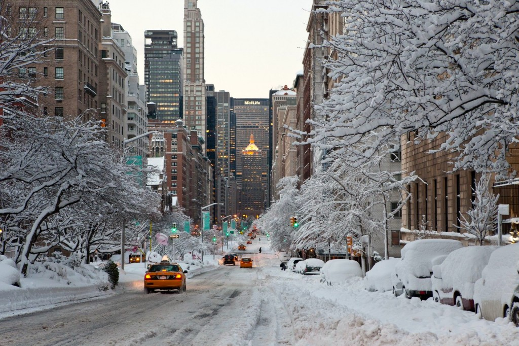 Manhattan, New York – Happiness is snow-capped trees in the city