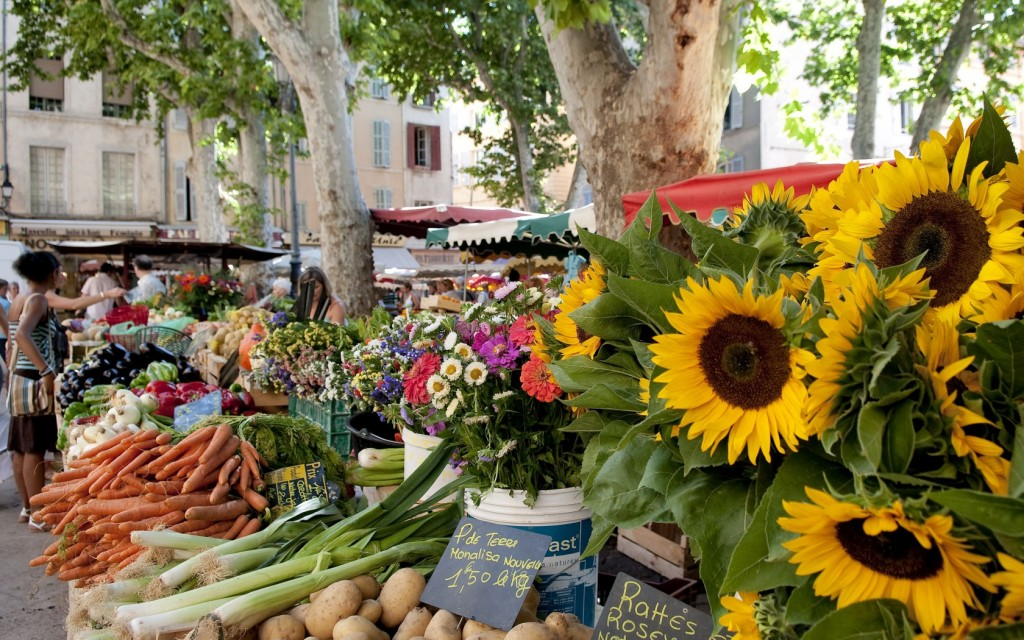 ladyhattan luxury travel blog nyc france provence tara schoen moss