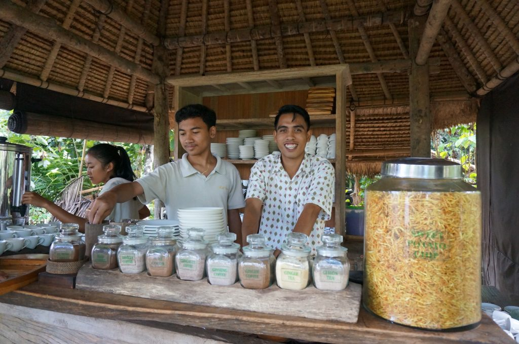 Bali, Indonesia – The Luwak Coffee Plantation